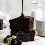 fudgy brownies, blackout brownies