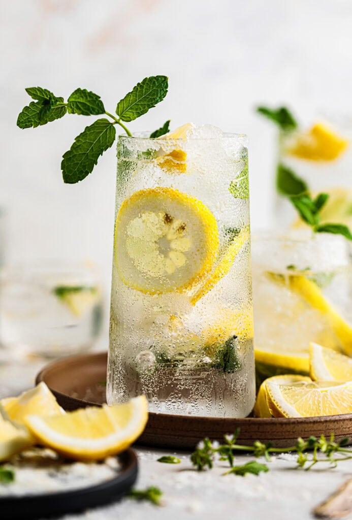 Lemon mojito in tumbler