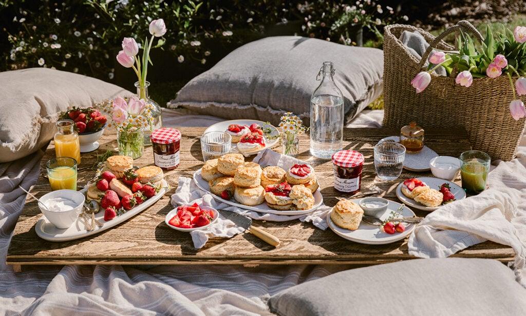 strawberry shortcake picnic